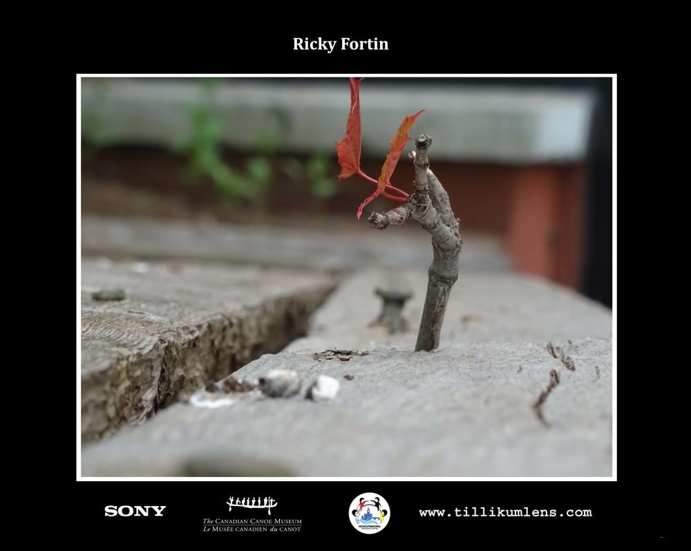 Ricky Fortin 2 Logo Centered.jpg