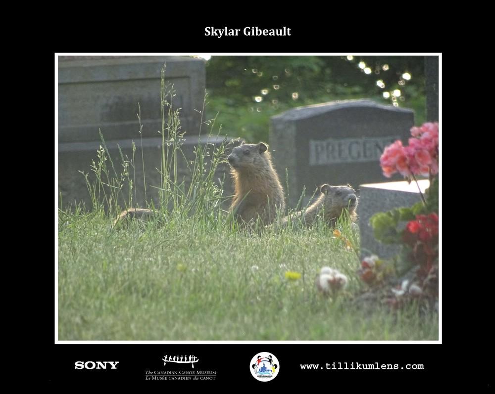 Skylar Gibeault 2Logo Centeredo.jpg