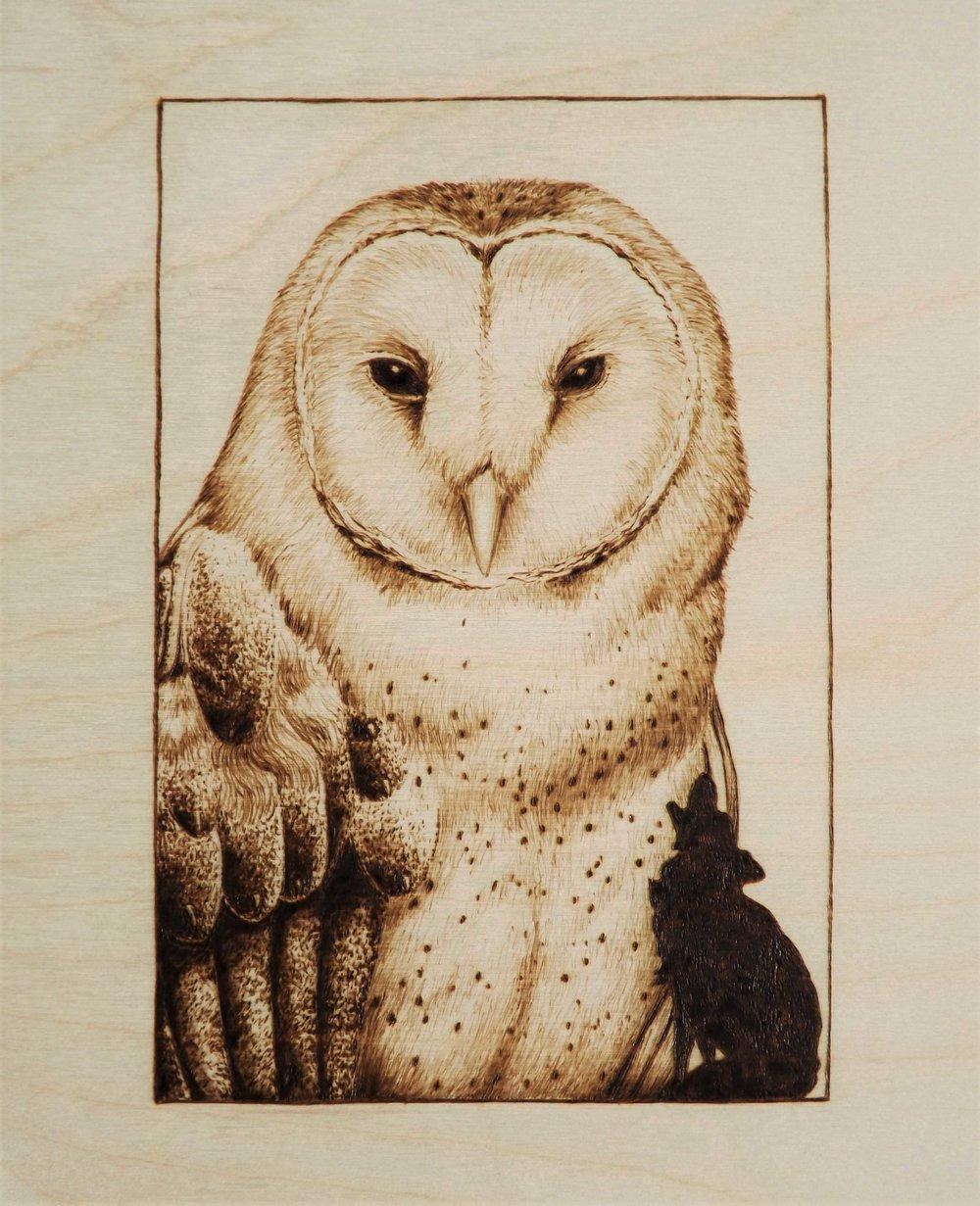 Pyro course barn owl 1.jpg.jpg