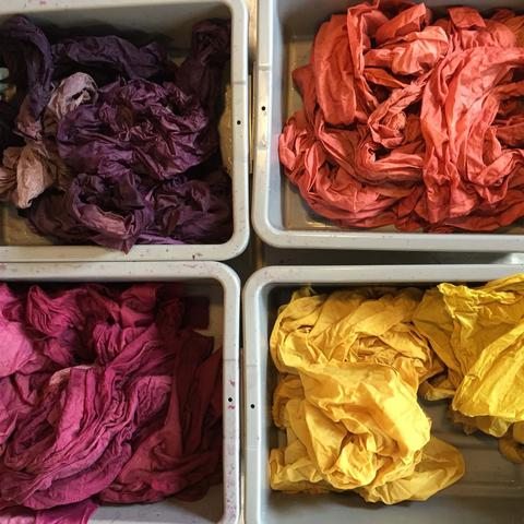 Natural Dyeing.jpg