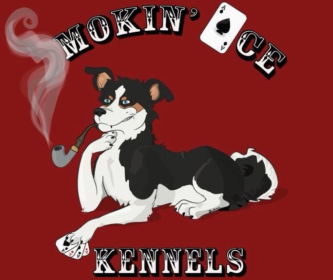 Smokin' Ace Kennels