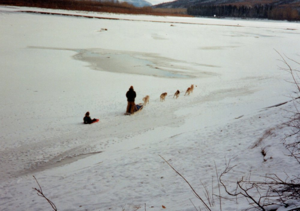 Life on the Yukon River - Matt Hall was born and raised in the Bush of Alaska in the small town of Eagle, located along the Yukon River. Raised by his parents, Wayne and Scarlett Hall, he was immersed immediately into a life with sled dogs.  He had a very sweet, yet modest upbringing, relying on the family's sled dogs for transportation, income, sport and companionship. Everything at the Hall residence was centered around their substance lifestyle & the beloved Alaskan Huskies.