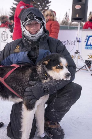 2014 -- Hall's First Yukon Quest-1,000 - 2014 was Hall's rookie run in the Yukon Quest.  At this time, he was the youngest musher in the line-up and finished the race placing 3rd.  He proudly walked away with a handful of awards including Rookie of the Year, Spirit of the North and the Veterinarian's Choice Award. Matt was extremely proud of earning the latter achievement, as it exemplifies his philosophy that dogs come first. That year Matt took home the Rookie of the Year, Vet's Choice & Spirit of the North awards. 2014 also marked the year that Hall reached his first goal of his kennel--to cross the 1,000-mile finish line of the Toughest Sled Dog Race in the World, The Yukon Quest.