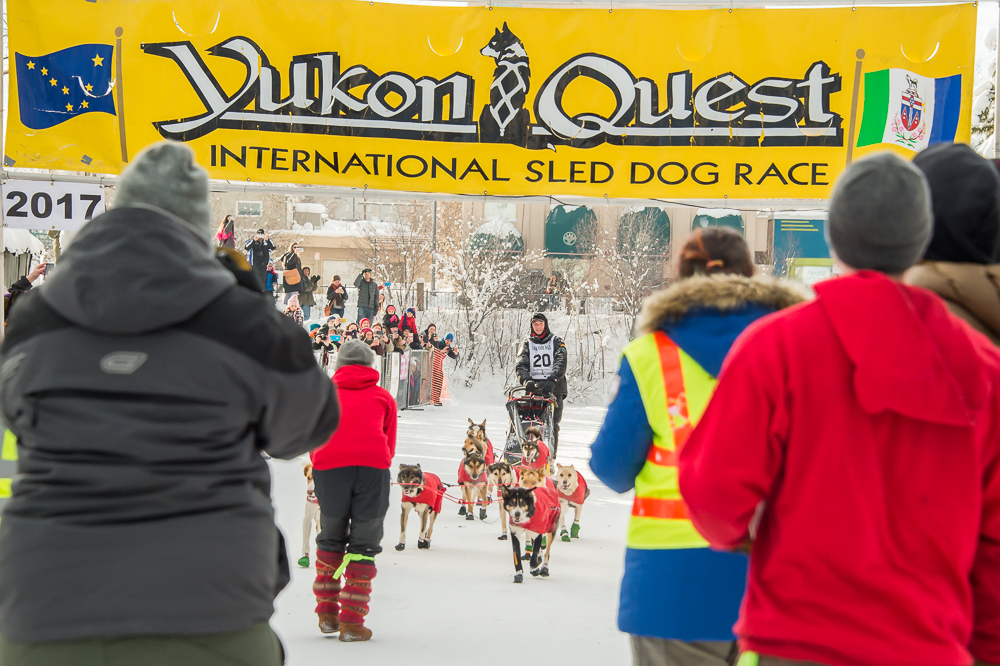 2017 Yukon quest champions - 2017  marked a childhood dream come true--Matt had won the Championship title in the 1,000-mile Yukon Quest.  He finished the race on February 14th in 10 days 1 hour and 7 minutes. It was his second attempt going in the Whitehorse - Fairbanks direction.  His two lead dogs, Anchor & Keeper were awarded Golden Harnesses and all dogs were given steak and roses at the finish line.