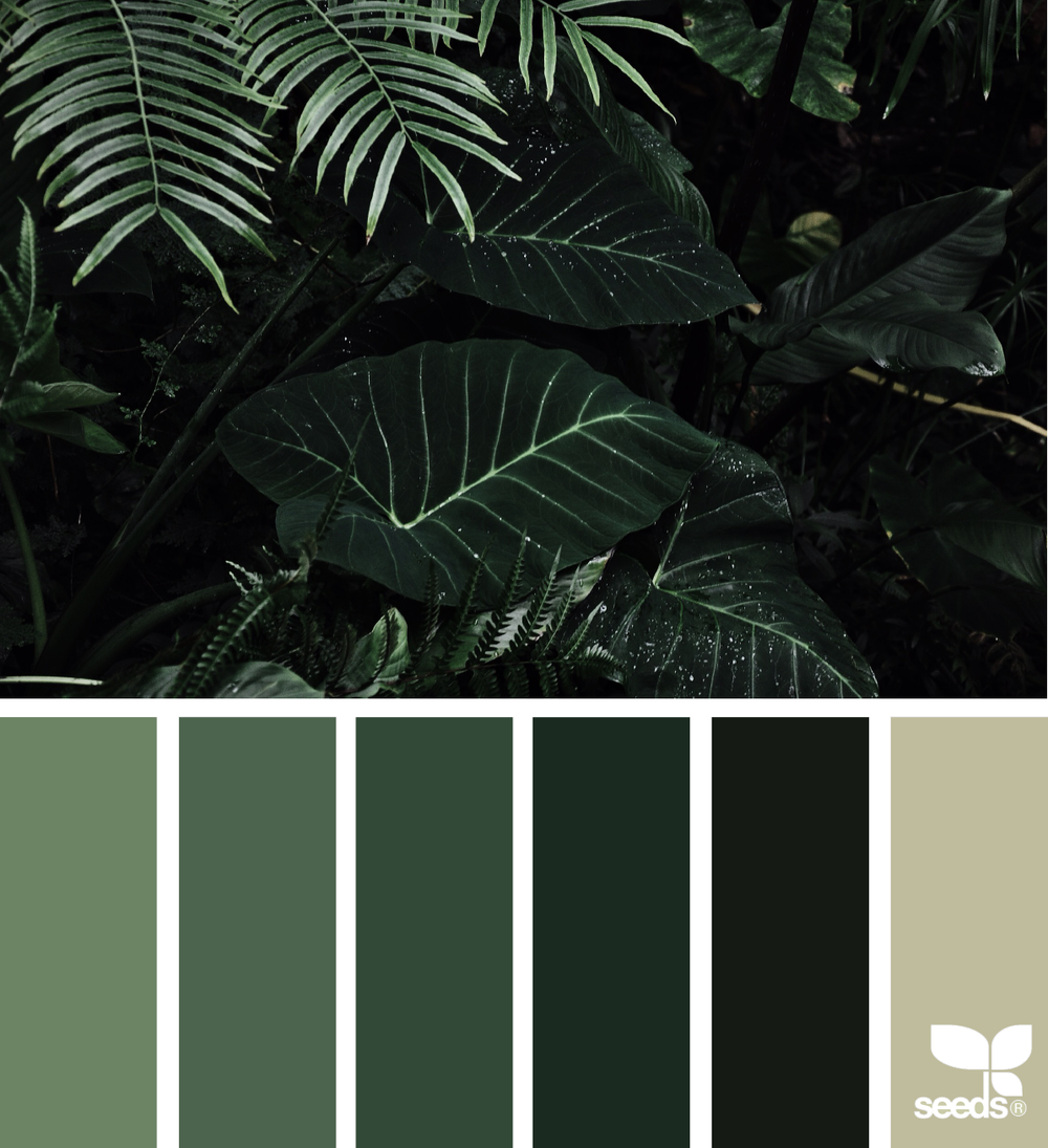 Image Courtesy of Design-Seeds. Click here for color codes.