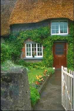 cottage garden 2.JPG
