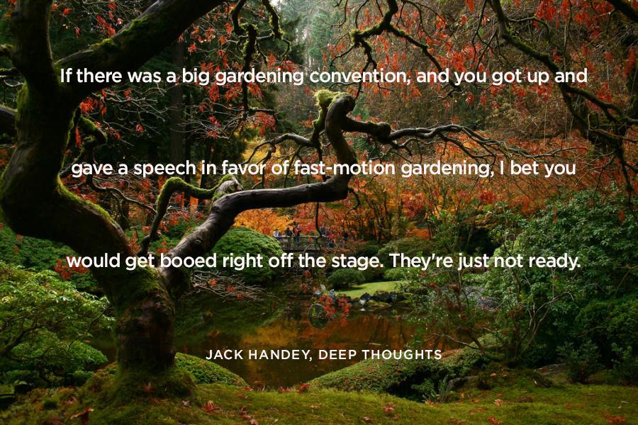 JackHandeyQuoteSquareBlog.jpg
