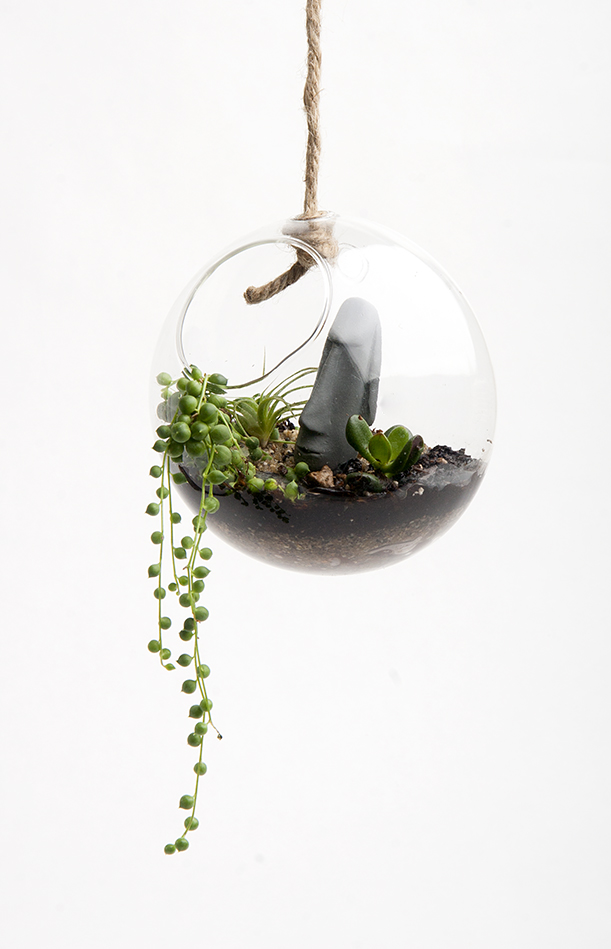 HangingTerrariumKit3.jpg
