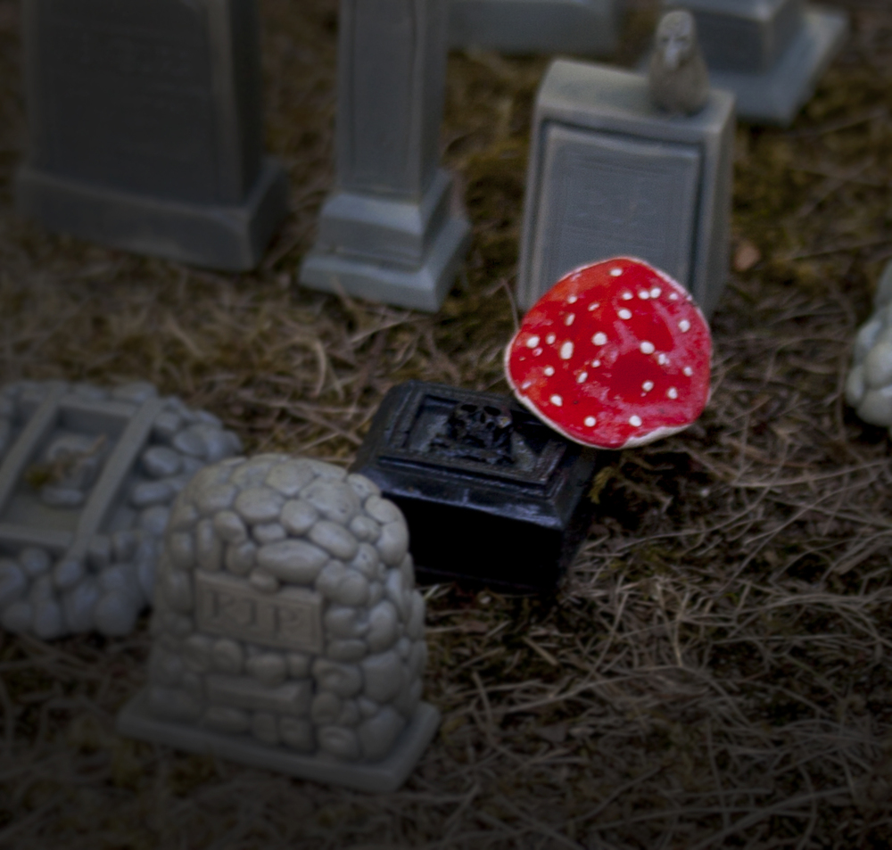 RedMushroomInCemetery.jpg
