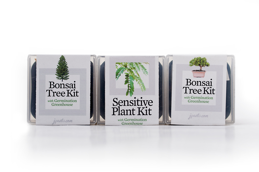 BonsaiTreeTrioWhiteSiloProduct.jpg