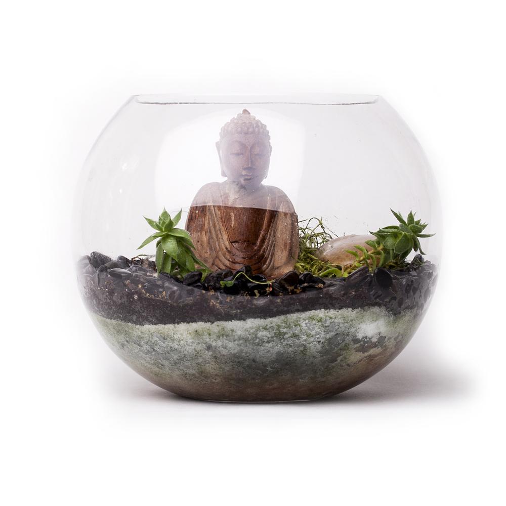 BuddhaTerrariumRoundWhiteSquare.jpg