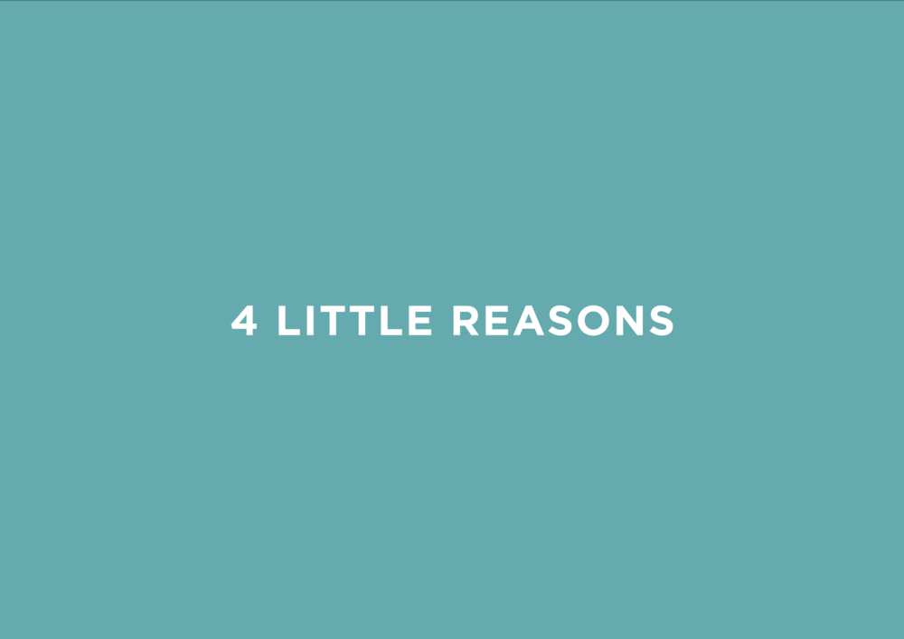 4 little reasons, logo design by created by south, branding, packaging, websites, collateral, print design