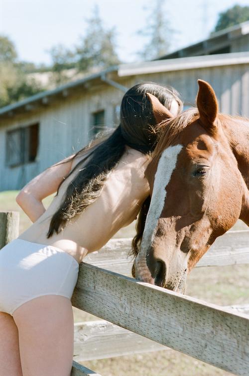 PANSY CLUCAS HORSES 2.jpg