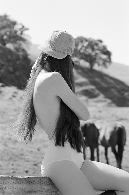 PANSY CLUCAS HORSES 4.jpg