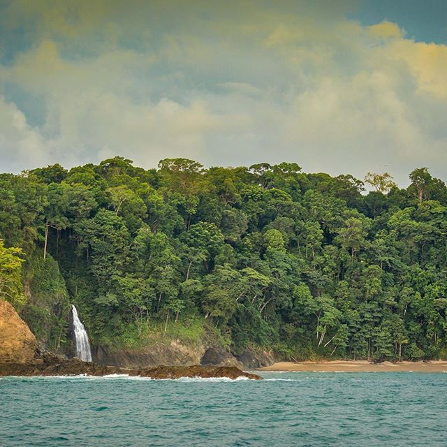 Rainy season = waterfalls dropping straight into the ocean in southern Costa Rica.  #wildernessculture #drakebay #flyfishing #costarica #fishingtakesyouplaces
