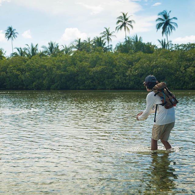 Feeling the rejection. Embracing refusal. Also, this posture just screams back pain in the future. #permit #flyfishing #fishing #nature #panama #sightfishing #tailingfish #flatsfishing #timingtides