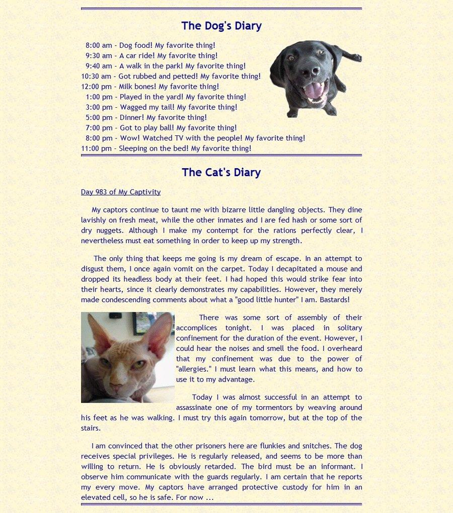 Cat Diary.jpg