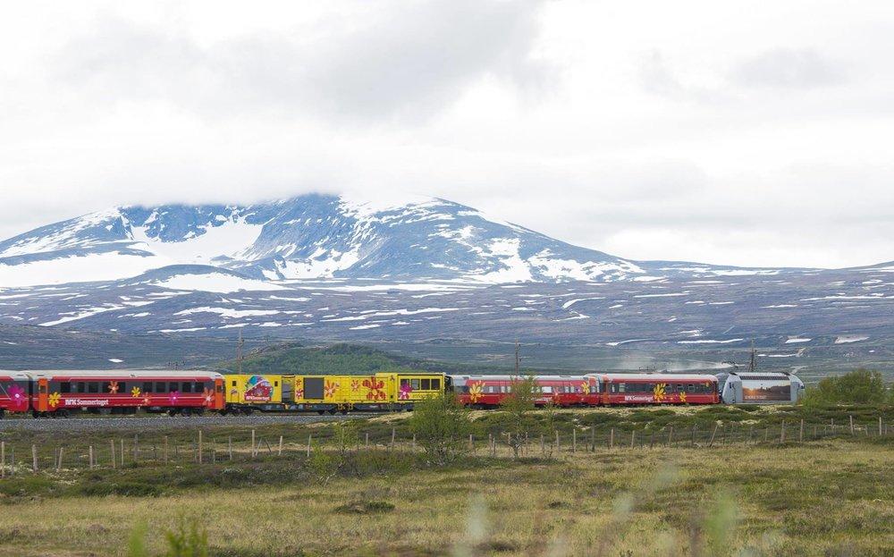 Sommertoget på vei over Dovrefjell.