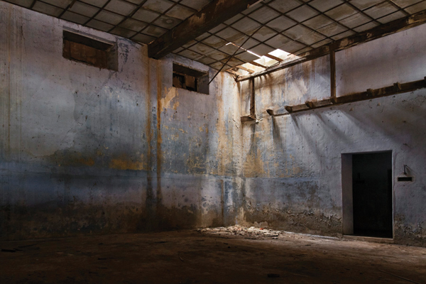 Old derelict warehouses as galleries for world-class contemporary art