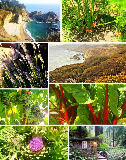 california.jpg
