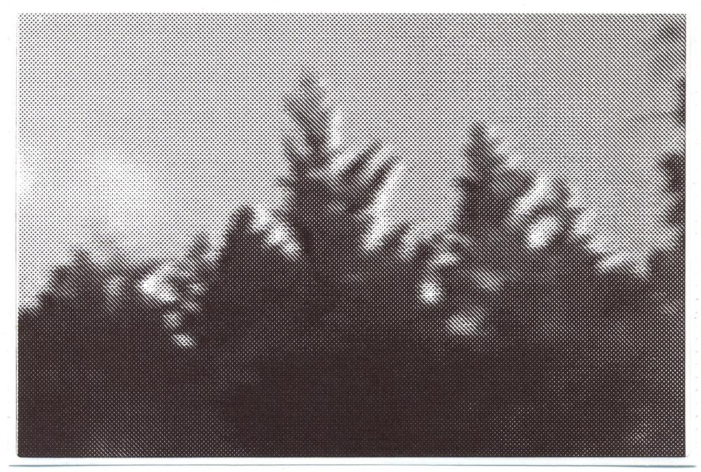 11 wide crop.jpg