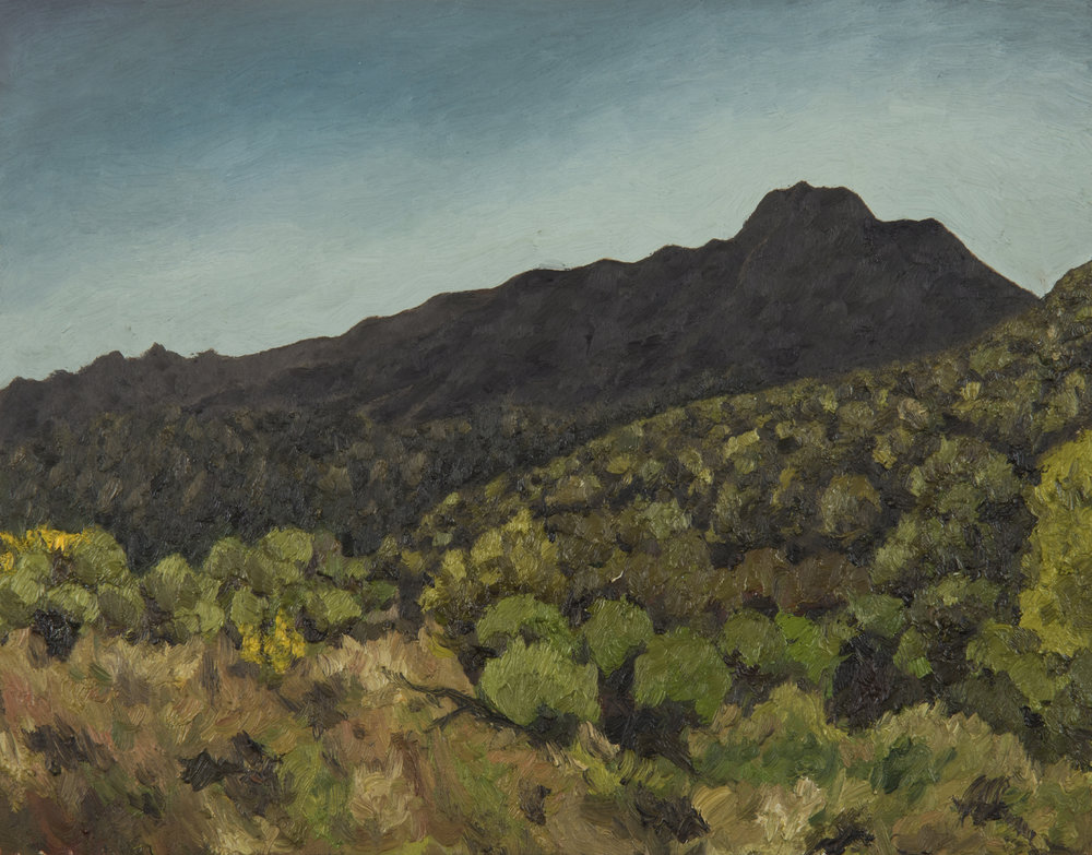 "Mt. Tamalpais from Middle Summit Fire Rd  Oil on Panel 11"" x 14"" 2018"