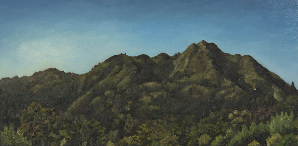 "Mt. Tamalpais from Tamalpais Ave rooftop #2  Oil on panel 8"" x 16"" 2018"