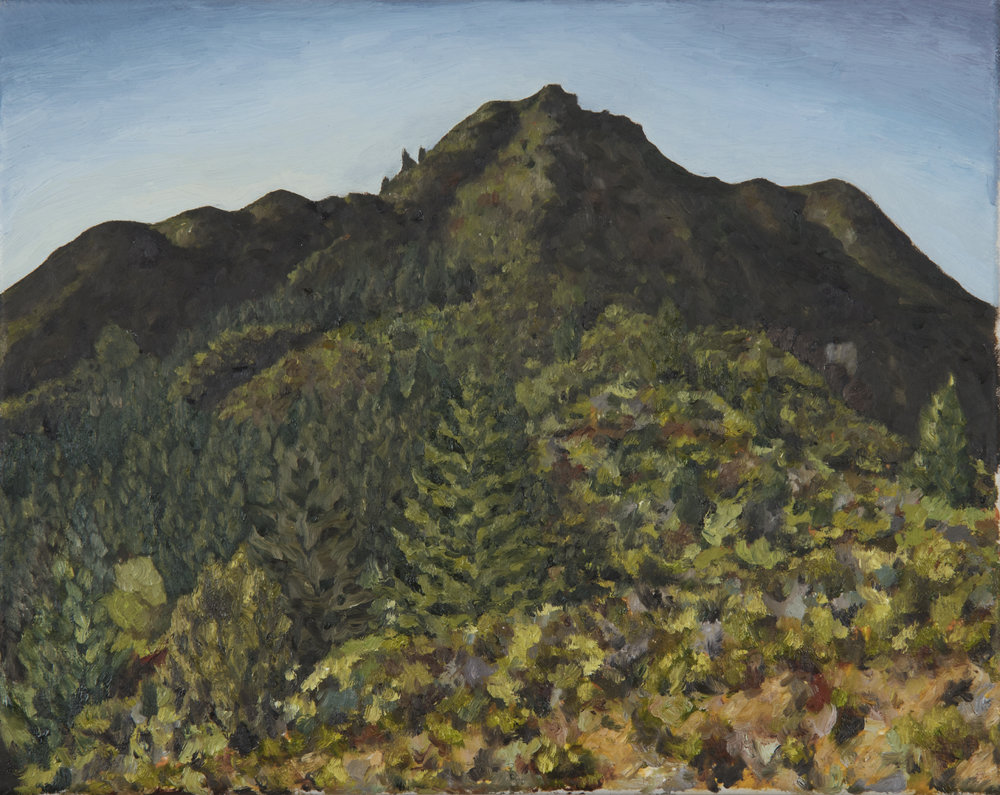 "Mt. Tamalpais near Fern Canyon Rd  Oil on canvas 11"" x 14"" 2018"