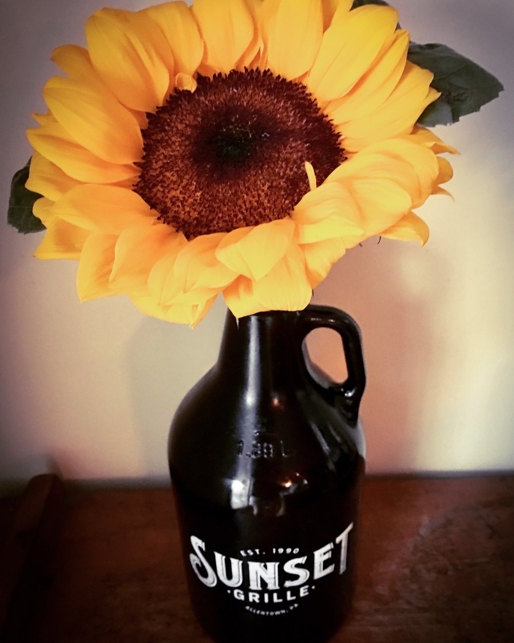 Growler Sunflower.jpg
