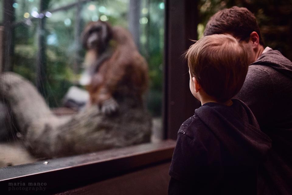 Cleveland Zoo 1