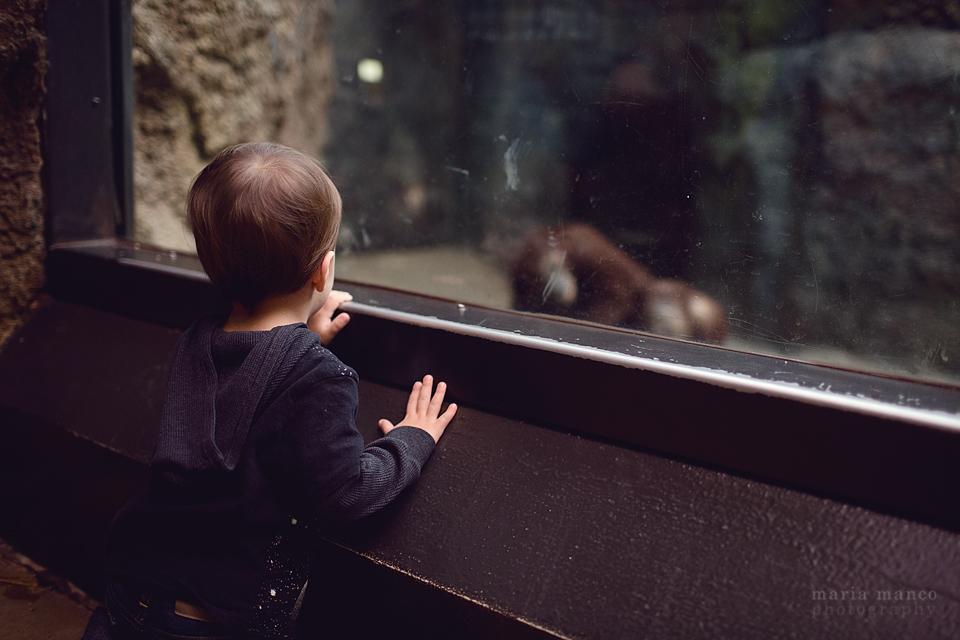 Cleveland Zoo 5
