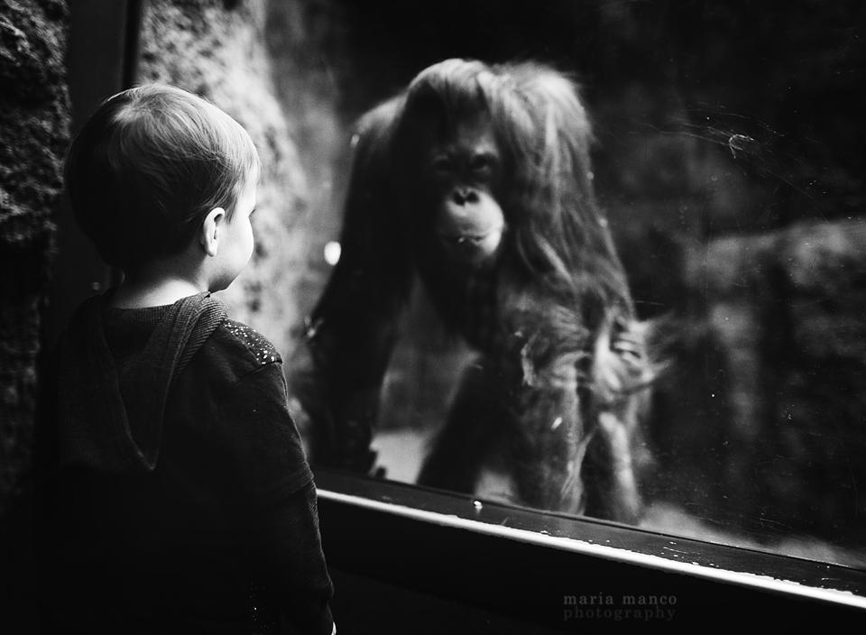 Cleveland Zoo 6