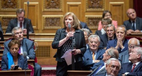 Обсуждение Закона о криминализации Геноцида армян в Сенате Франции