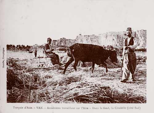Армянские крестьяне в Ване. Молотьба. На заднем плане вид Ванской крепости с юга