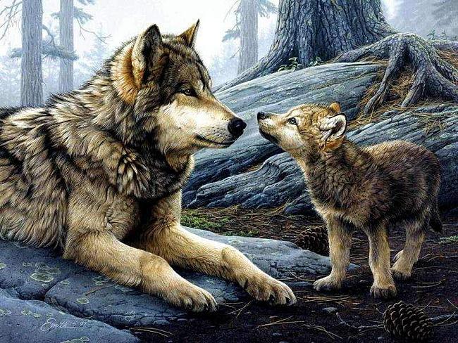 """""""И хотя люди нас считают злодеями, я докажу тебе, что за добро и волк может отплатить добром. Я отведу тебя в никому не ведомое место"""""""