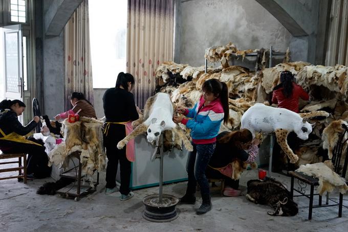 Мы надеемся, что Цай спасет от российских детей все китайские игрушки!