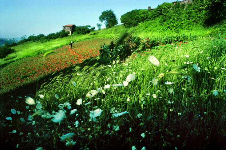 фото Ара Гюлера с сайтаwww.araguler.com.tr