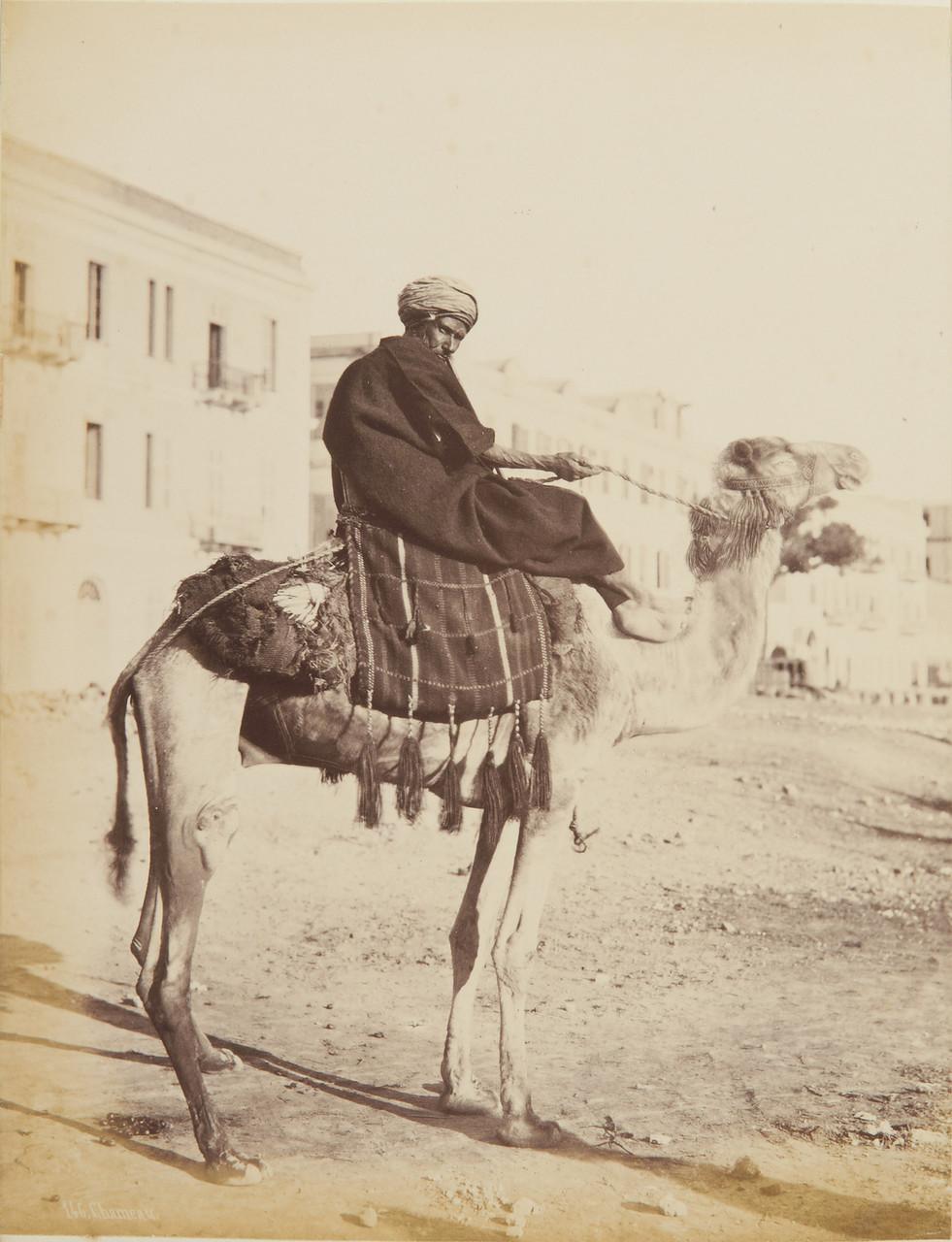 Всадник на верблюде. 1873-82.jpg