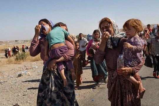 Сотни езидов, в основном больные, старики и дети, умерли на пути к горе Шангал от жары, голода и жажды фото www.ru.1in.am