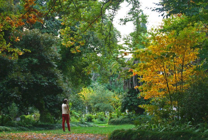 Осень в Абхазии. фото68.media.tumblr.com