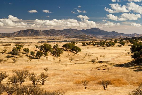 Хрустальная пустыня в Мексике. pictures-osn.eventparadise.ru