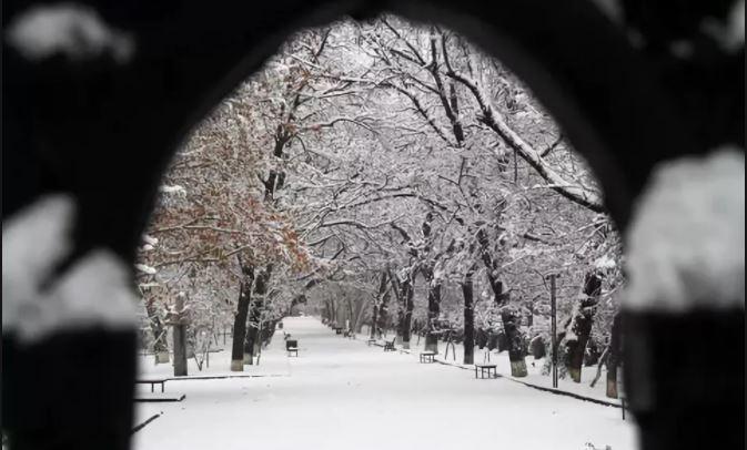 Фото panorama.am