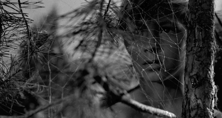 Фильм Тарковского по отношению к рассказу снят с обратной точки: не Иван на войне увиден глазами лейтенанта, а лейтенант и война — все увидено как бы глазами Ивана