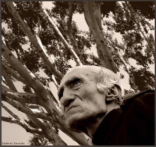 """""""Когда я читаю об армянских событиях, я представляю себе, что сейчас испытывает Матевосян. Вот так, через любовь к этому человеку, у меня появились какие-то армянские черты"""", - писал о нем Сергей Довлатов. Фото Самвела Севады"""