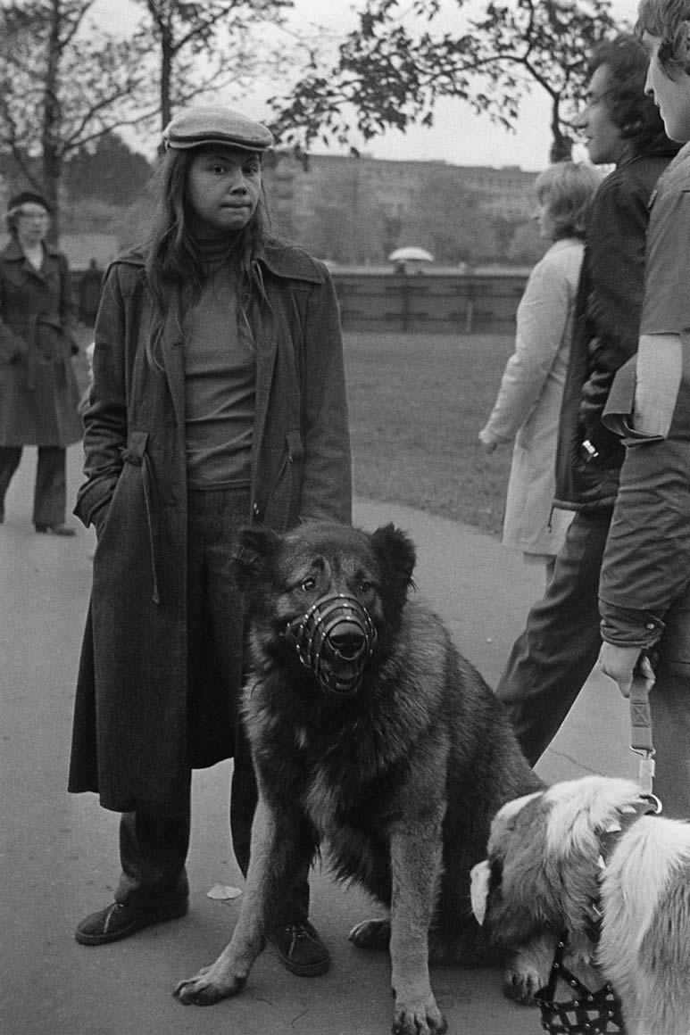 dogshow81.jpg