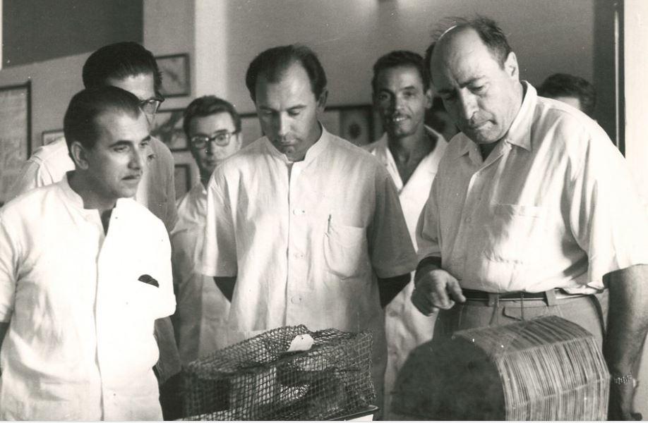 А.И. Бурназян осматривает клетки с подопытными животными. Куба, 1960-е гг. ФотоФотоktovmedicine.ru