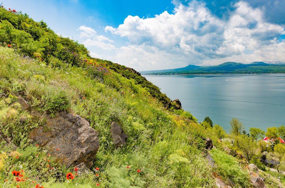 Озеро Севан | flickr.com, автор Dmitry Karyshev