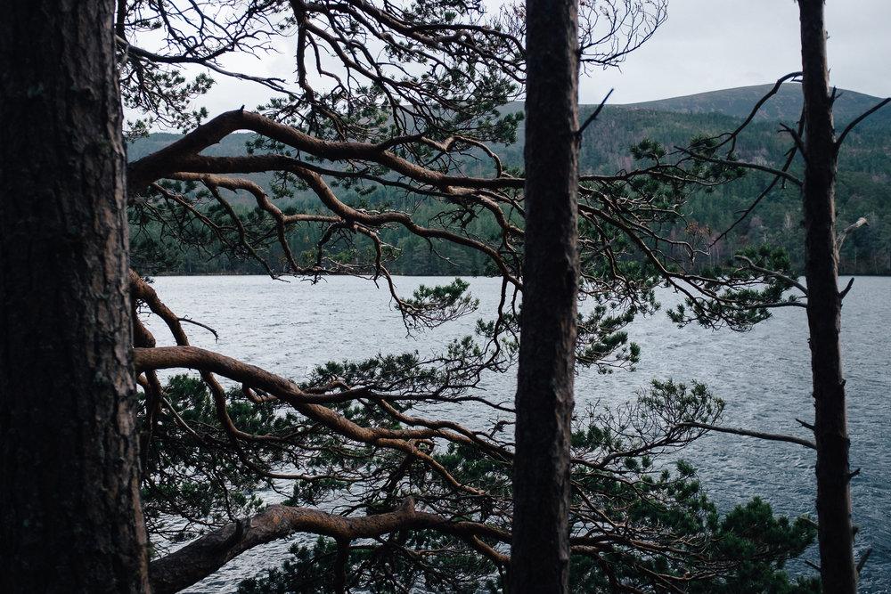 Skotland-blog-066.jpg