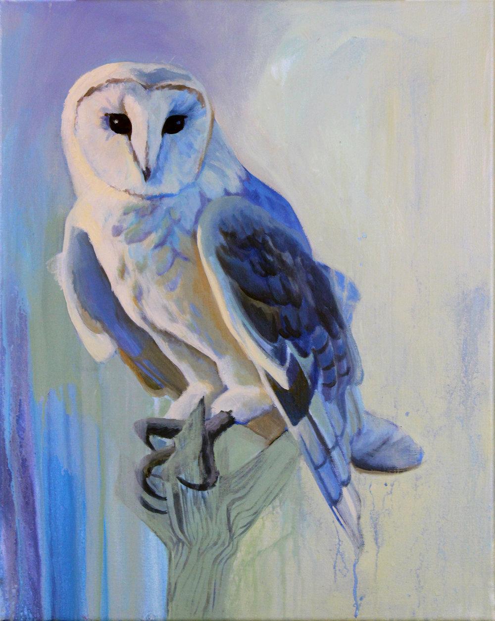 Owl- Web.jpg