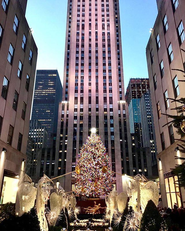 每年底紐約的曼哈頓總是充滿濃厚的過節氣氛  #xmastree #bryantpark #xmas #manhattan #nycniceview #hellocities #nellonyc#聖誕節🎄 #nycevents #nyctour#紐約深度旅遊#紐約行程客製化 #紐約觀光 #紐約生活 #紐約好好玩 #紐約深度旅遊 #亞洲到紐約#ニューヨーク観光 #ニューヨークガイド